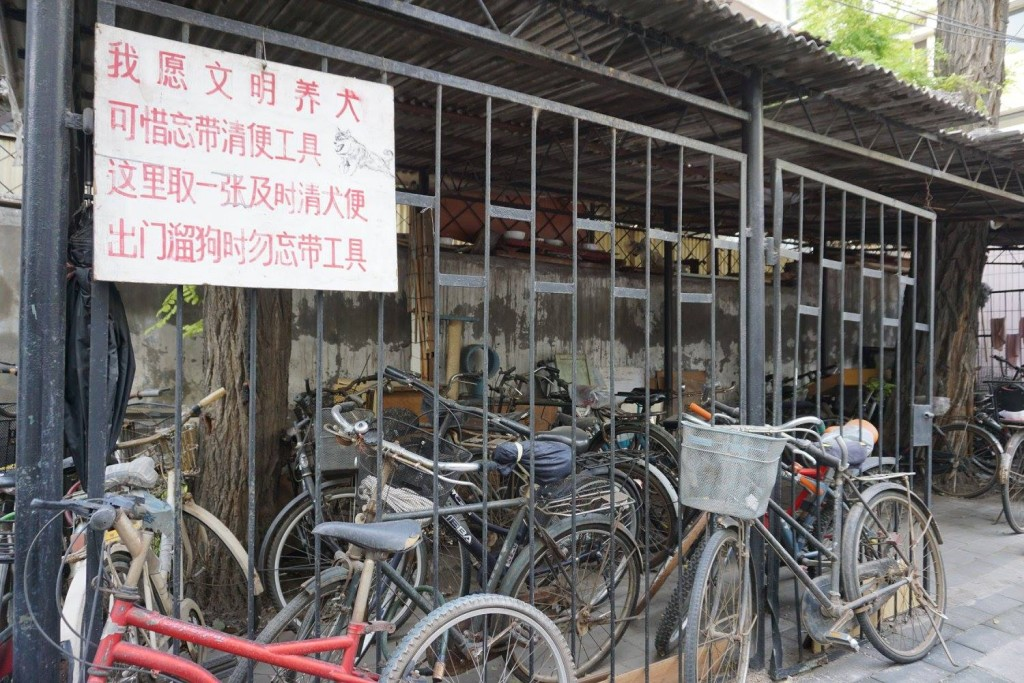 A large section of Beijing rides bikes.