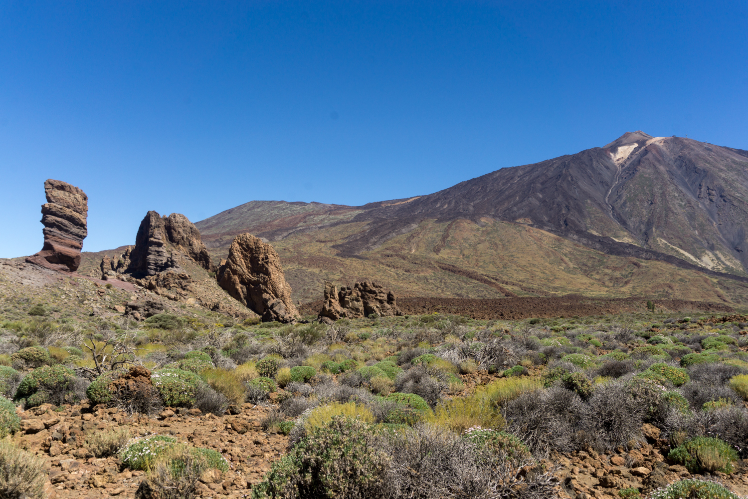 On our first full day, we headed to Mount Teide, the highest point in Spain, as well as the third highest volcanic Island in the world.